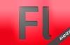 Adobe Flash CS4 Con Actionscript (Avanzado)
