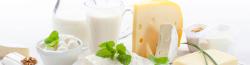Manipulador De Alimentos – Productos Lacteos