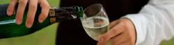 Manipulador De Alimentos – Bebidas Alcoholicas
