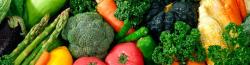 Manipulador De Alimentos – Sector Hortofructícola