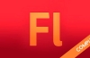 Adobe Flash CS5 Completo