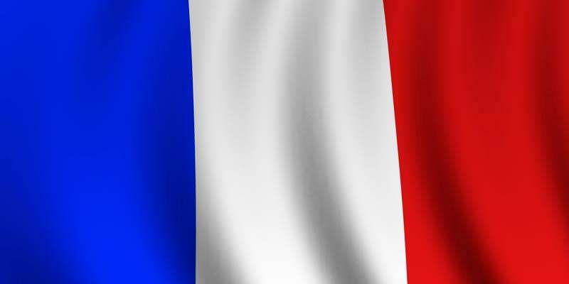 Francés (5 Niveles)